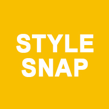 Style Snap